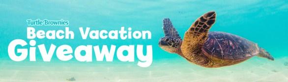 Little Debbie Turtle Brownie Giveaway - Enter To Win Trip To Jekyll Island, Annual Zoo Memberships
