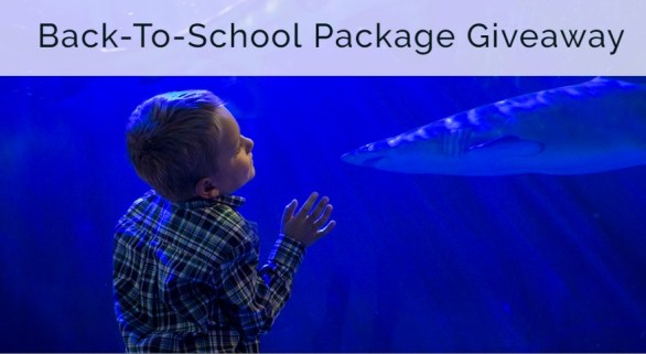Bloomington CVB Mall Of America Back-To-School Giveaway - Chance To Win $500 Mall of America VISA Gift Card And Two-night Accommodations