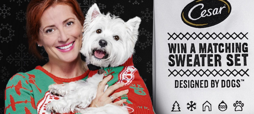 CESAR Twinning Holiday Sweater Sweepstakes – Win Sweaters