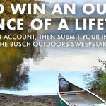 Busch Bucks Sweepstakes