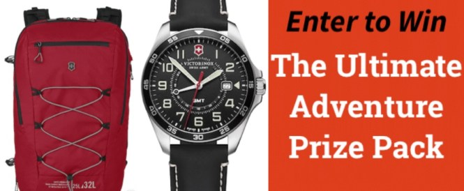 Scary Mommy Some Spider Victorinox Giveaway