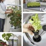Root Farm Hydro Garden Sweepstakes – Win $600 Prize
