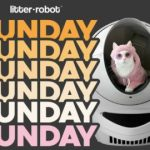Sunday Funday Litter Robot Giveaway – Win Cash Prize