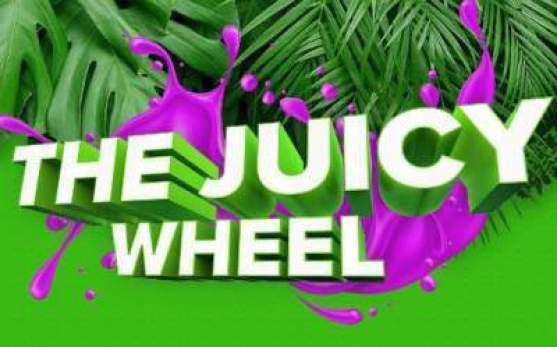 Fruite Juicy Wheel contest - Win Wheel Prize