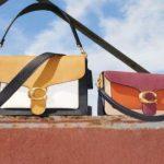 Selena x Coach Handbag Giveaway – Win Prize