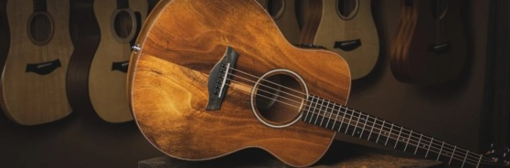 Taylor Guitars GS-Mini E Koa Giveaway