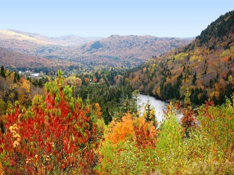 Cette route est aussi très belle en automne! - Photo libre de droits