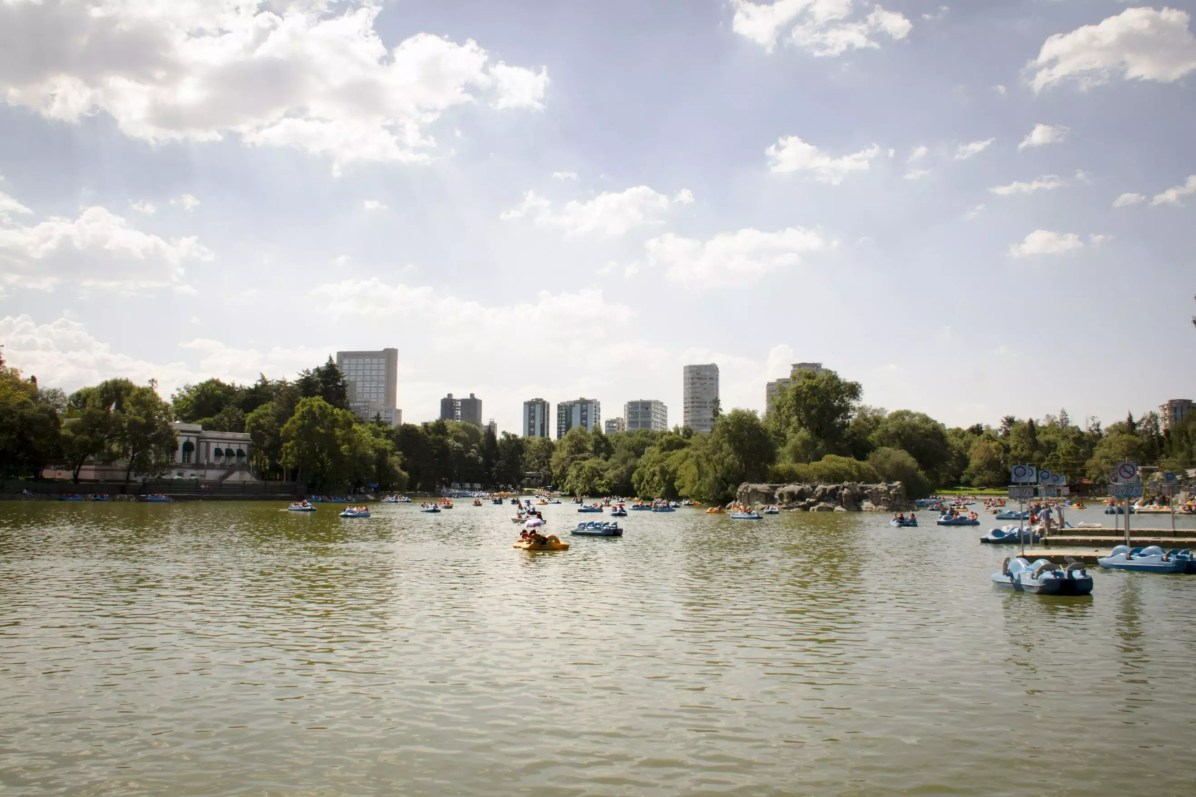 Where to Stay in Mexico City - Things to do in Mexico City - Things to do in Mexico City