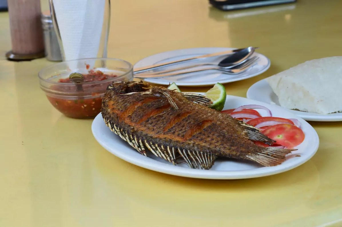 Nairobi fried fish - This is a copyright-free photo - Things to do in Nairobi