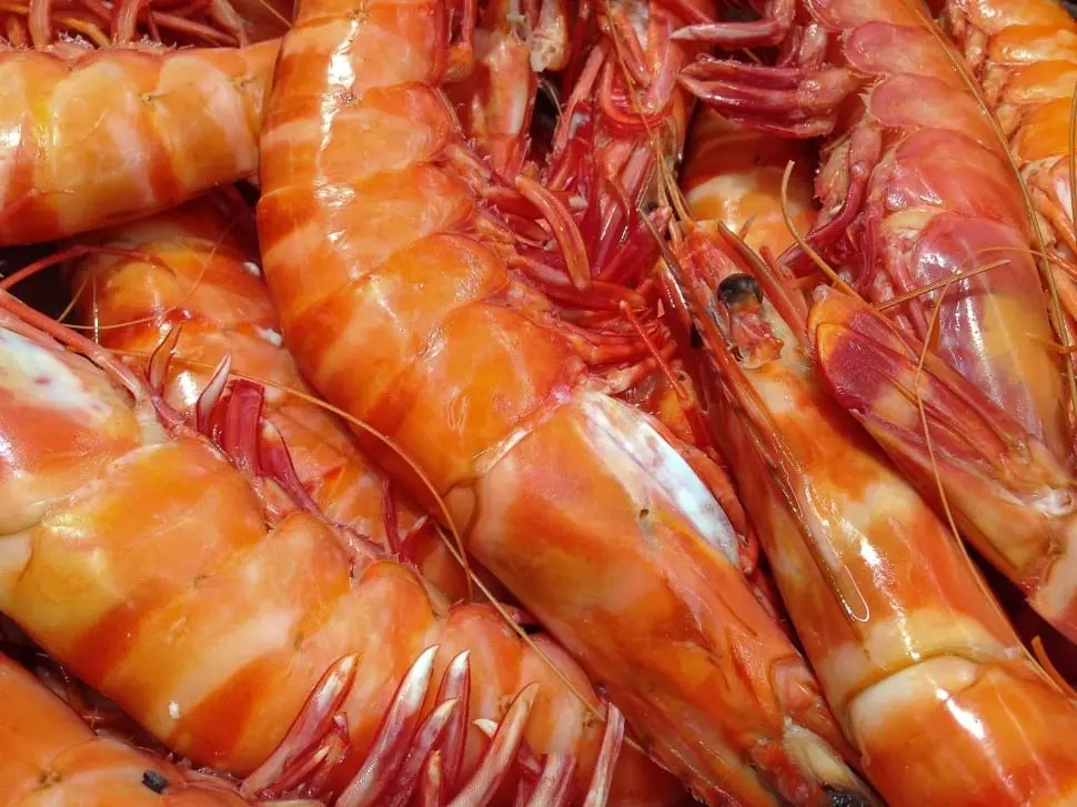 Steamed Shrimp - photo by Peakpx under CC0 1.0