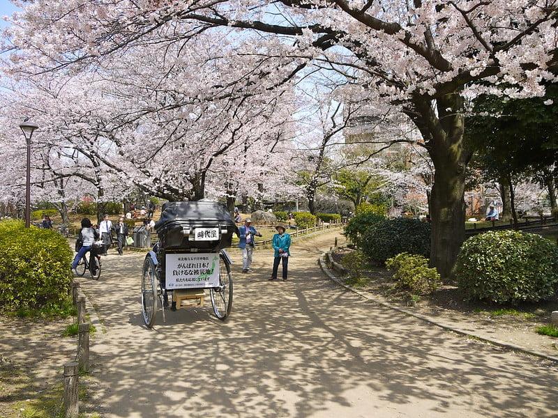 Sakura Season at Sumida Park - photo by Yoshikazu TAKADA under CC BY 2.0