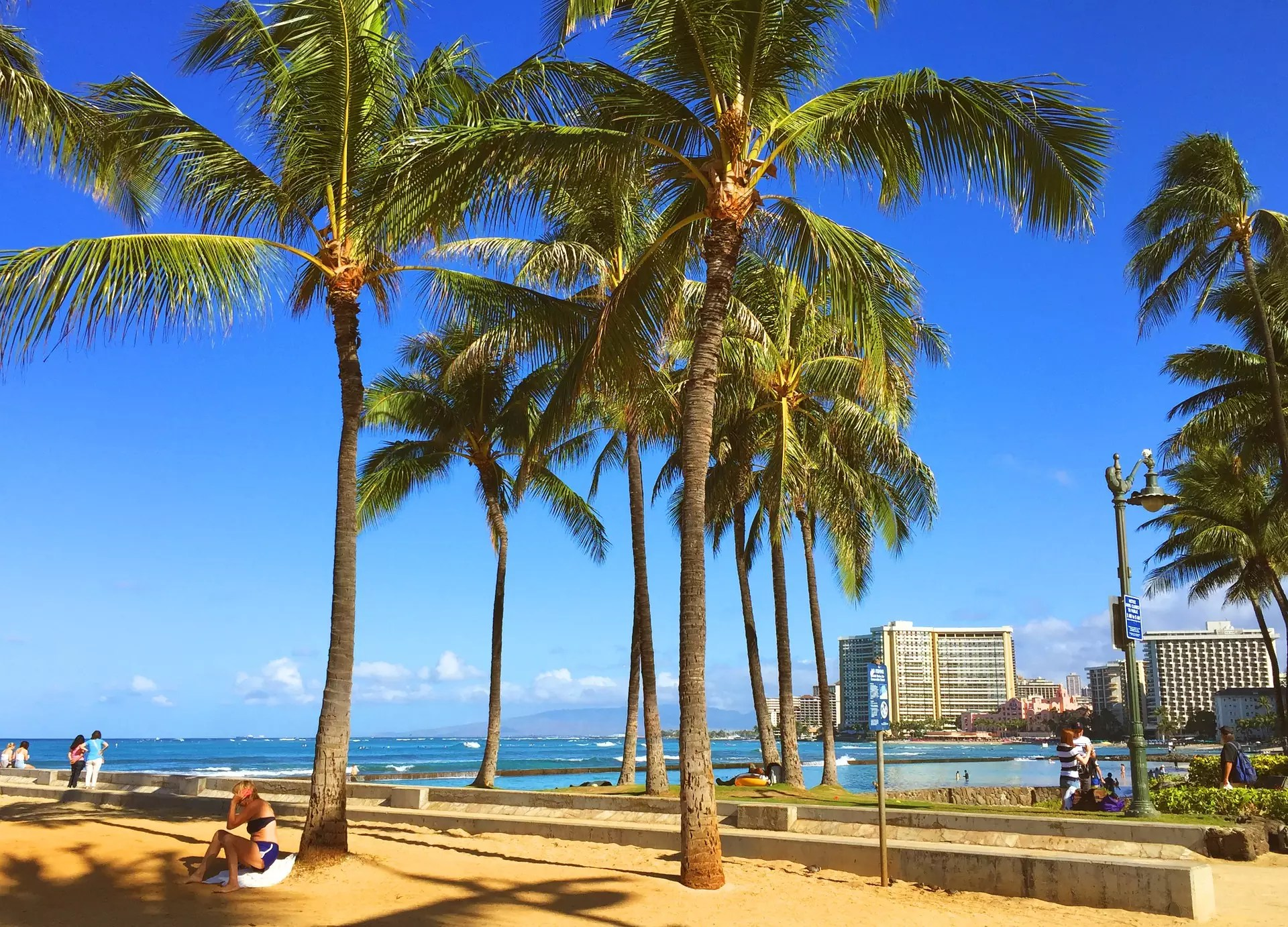 Anthony Bourdain Hawaii - Honolulu, Hawaii - photo by tommy143 under Pixabay License