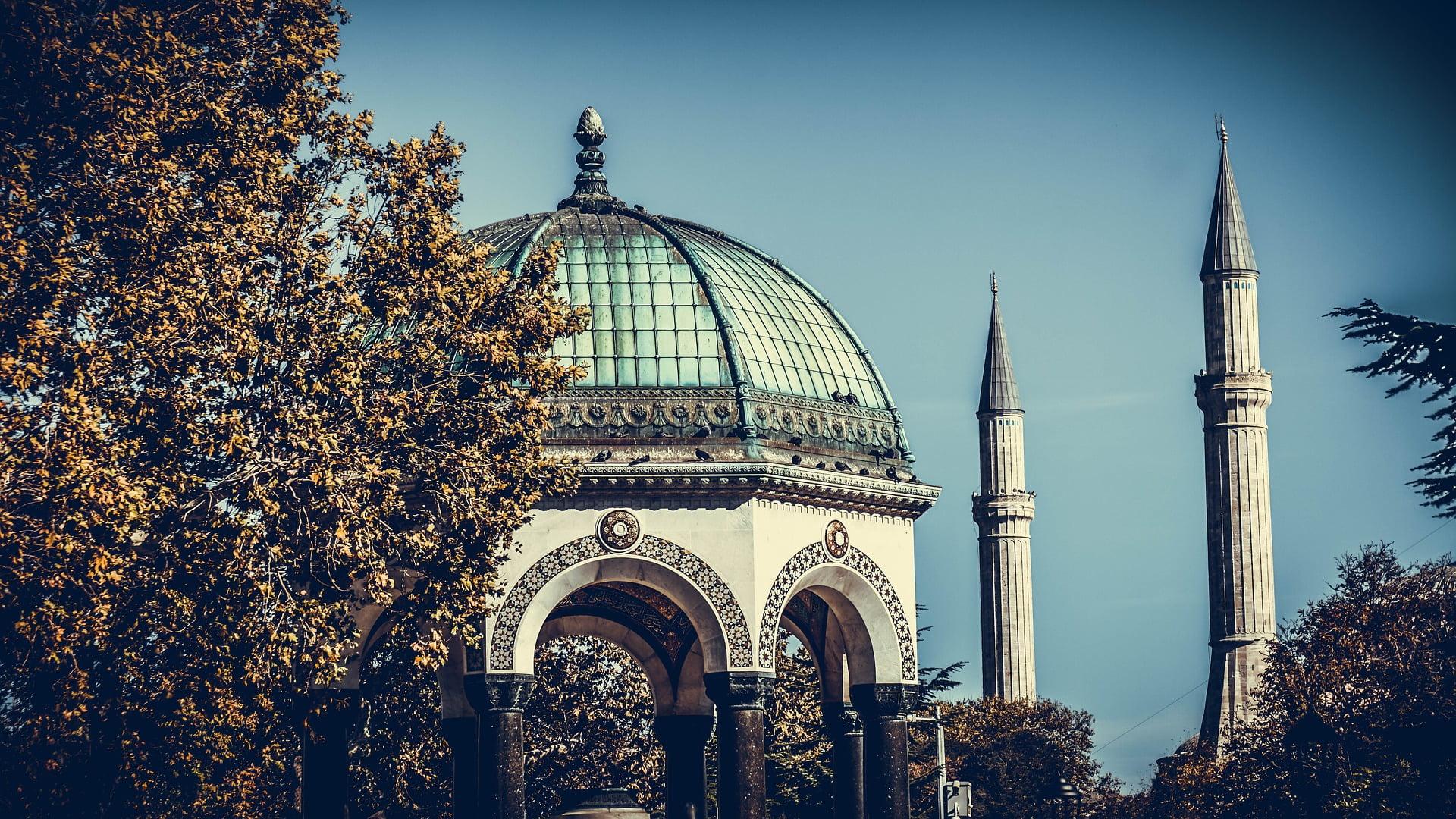 Mosque in Istanbul, Turkey - photo by Maria Saveleva from Pixabay under Pixabay License