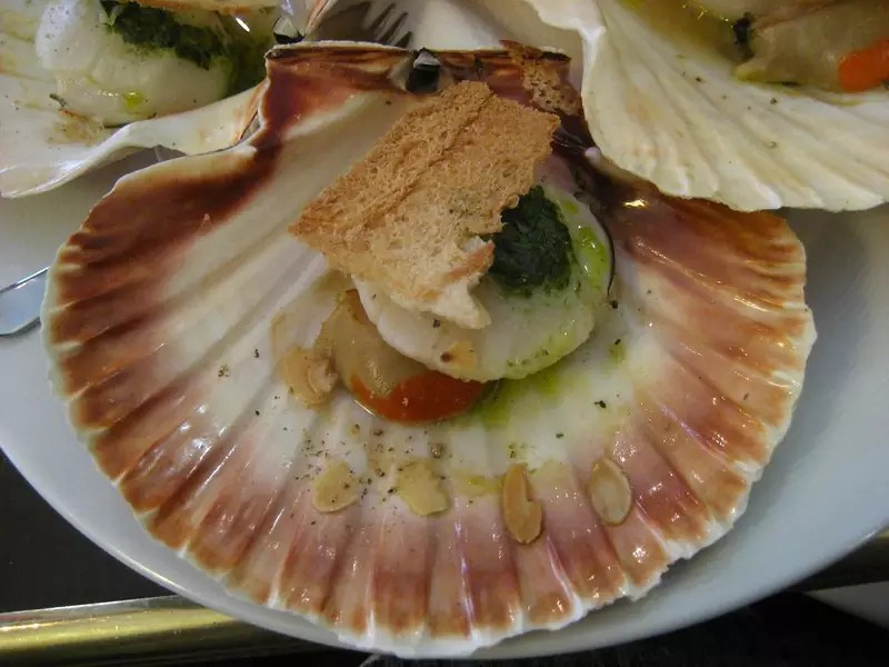 Coquilles Saint-Jacques - photo by Dan under CC BY-ND 2.0