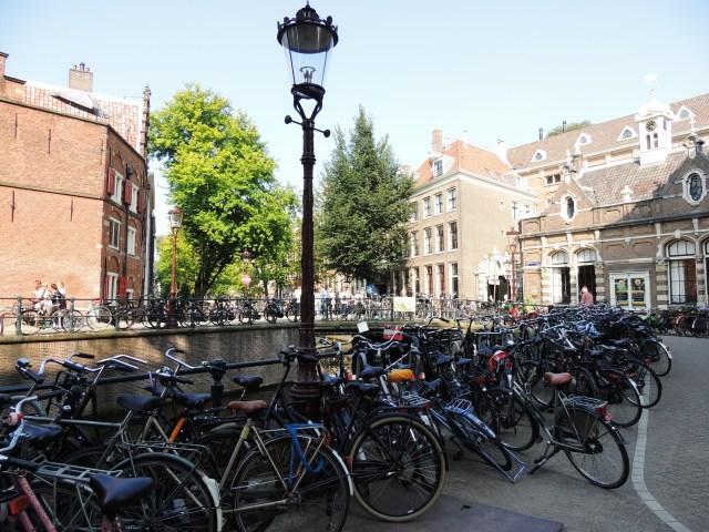 A hegemonia das bikes