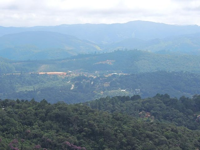 Vista de Monte Verde