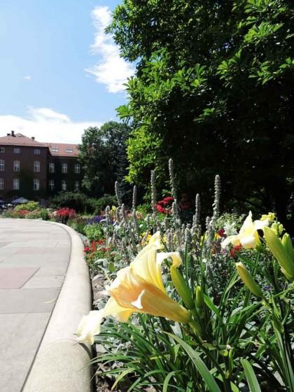 Castelo de Wawel todo florido