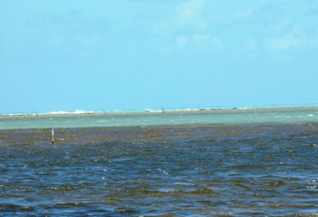 Encontro das águas do mar com o Rio Tatuamunha