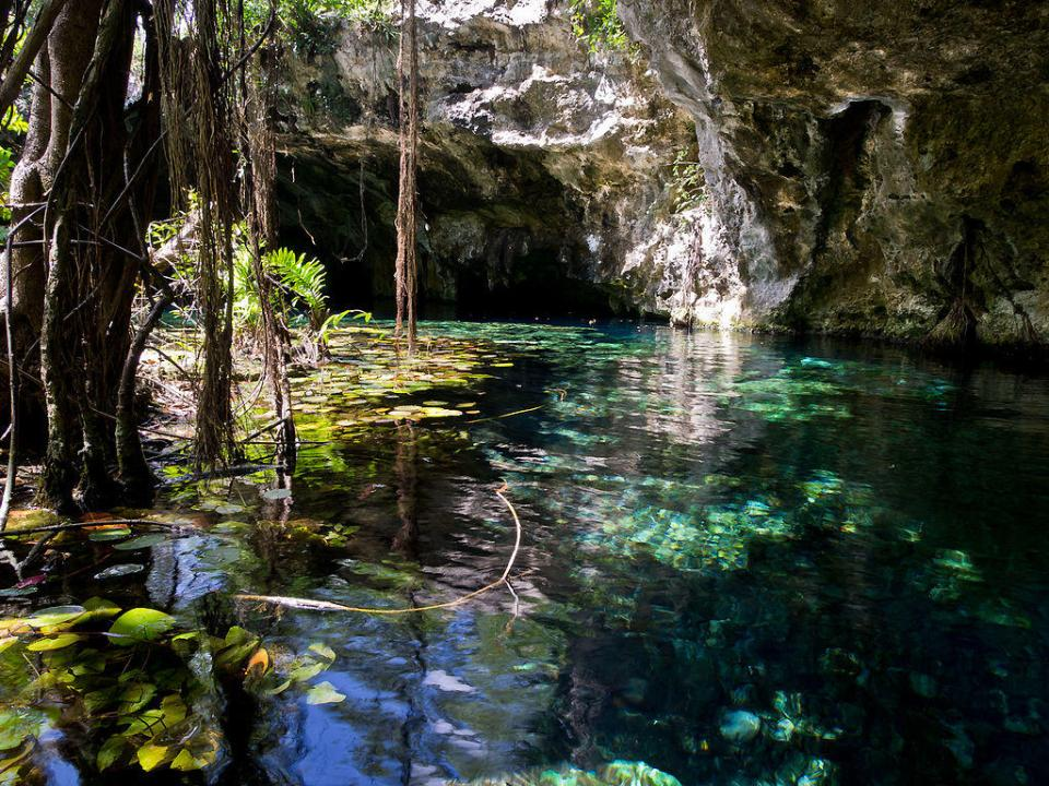 Gran Cenote near the municipality of Tulum by Ken Thomas (CC)