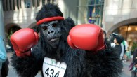Great Gorilla Run, London