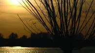 Stanwick Lakes, Northants - Halloween events