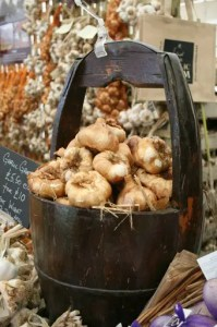 The Isle of Wight's Garlic Festival