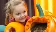 Pumpkin Festival at Willows Farm Village