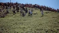 Daft downhill dairy in Gloucestershire with cheese rolling