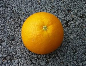 Totnes Orange Races 2014 - Contrary Life