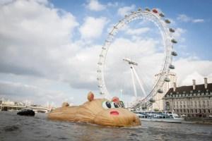 Totally Thames - Florentijn Hippo sculpture - Photo: Steve Stills