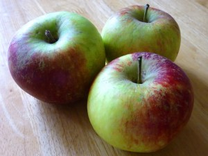 Apple Day events - Contrary Life