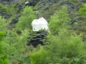 Curiosity of the Week - Bishop of Barf stone - Lake District