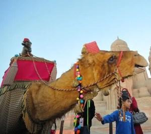 Koweit 2014 - Remal International Festival - P2BK