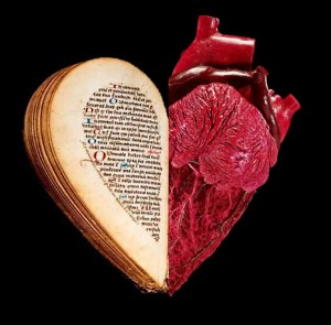 Two Hearts: Dissection & Desire - Barts Pathology Museum