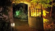 Enjoy some Enchanted Illuminations in a subtropical garden