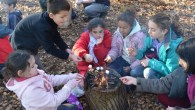 Send the kids off to a wild woodland camp this half term