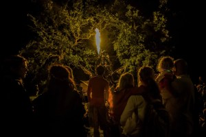 Timber festival of the forest - The National Forest Derbyshire