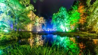 Enchanted Forest 2018, Scotland ANGUS FORBES