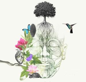 Poetics of Fragility - Settle Stories