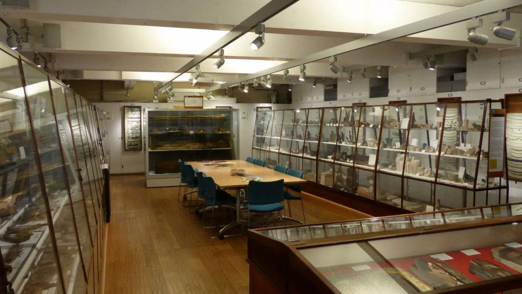 Interior of the Petrie Museum