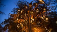 The Fire Garden, created by Walk the Plank, Image Vipul Sangoi