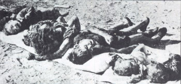 20 août 1955 : massacre d'El Halia. Un voisin à ses futures victimes : « Demain, il y aura une grande fête avec beaucoup de viande »