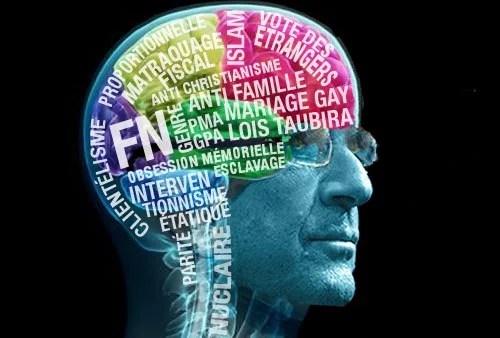 cerveau hollande