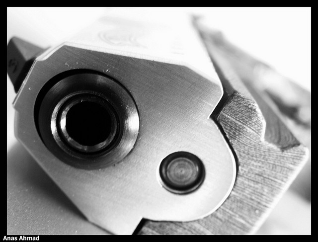 walter P22 armes credits Anas Ahmad (licence creative commons)