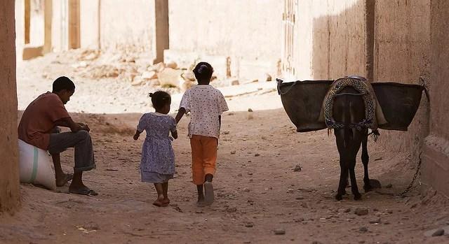 Maroc - De dos d'âne - Nwardez (CC BY-NC-SA 2.0)