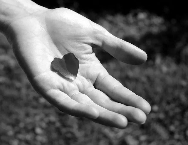 Avoir le coeur dans la main credits Amandine FRANCOIS-ROUSSEAUX ((CC BY-NC-ND 2.0))