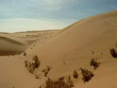 Le désert de Gobi (Crédits Junming, licence CC-BY-SA 3.0)