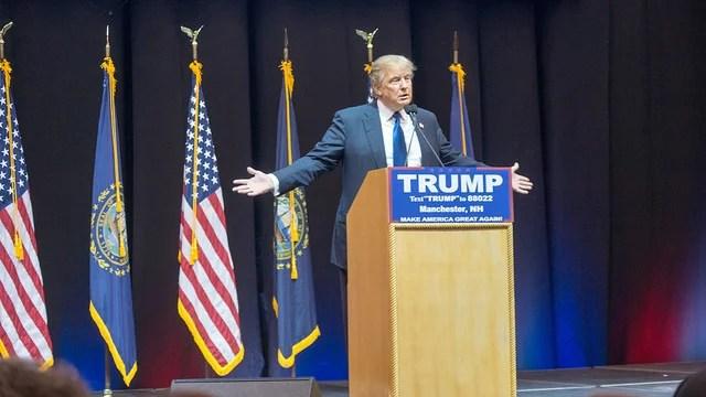 Donald Trump et les plumes perdues de la gauche radicale