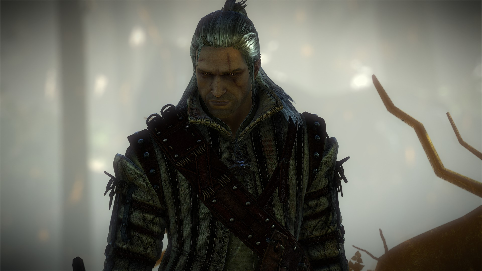 The Witcher 2: Assassin of Kings (Enhanced Edition)