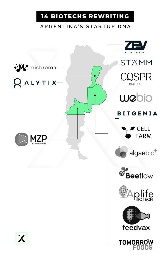 14 biotechs rewriting argentina's startup dna